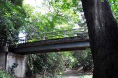 堀から見上げたどろぼう橋
