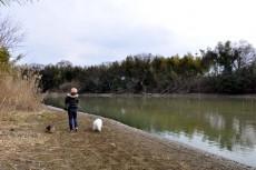 びん沼川ぞいをお散歩