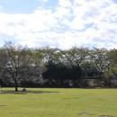 御伊勢塚公園 芝生広場