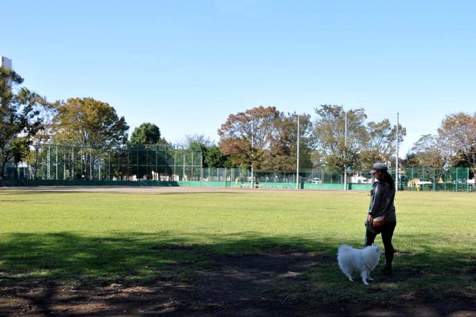 川鶴橋と笠幡公園
