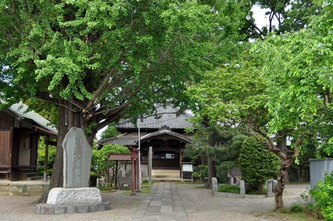 東明寺と川越夜戦跡