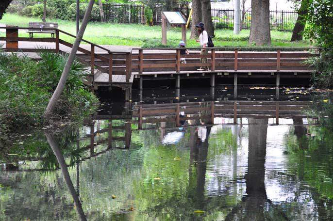 仙波河岸と愛宕の杜