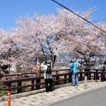 川越氷川神社裏の橋