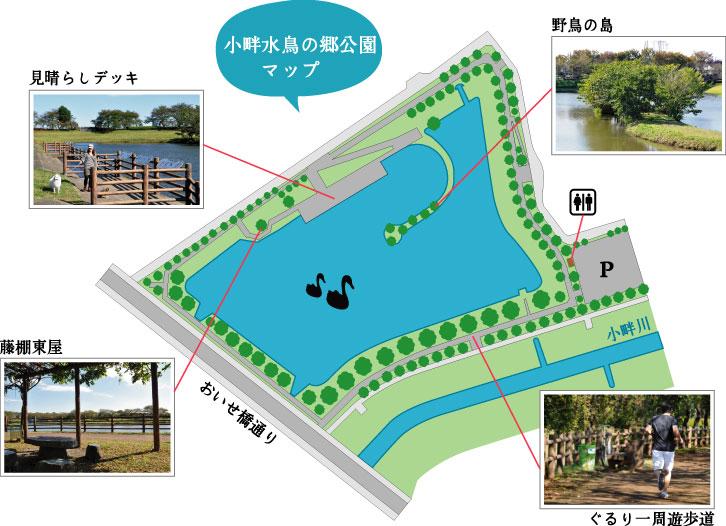 小畔水鳥の郷公園マップ