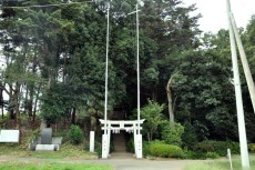 小堤八幡神社を覆う森