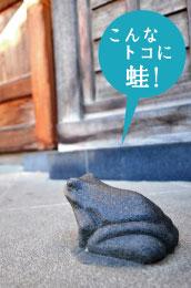 光西寺山門 蛙