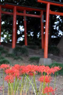 三変稲荷神社