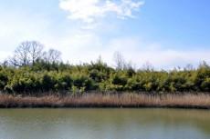 かつては三つ又の川だった