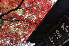 境内を真っ赤に染める紅葉