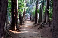 仙波愛宕神社