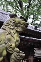 仙波氷川神社 狛犬