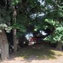 三変稲荷神社古墳 裏側