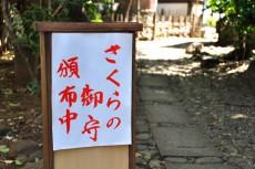 川越氷川神社でさくら御守