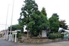 春日神社の全景