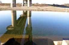 入間川にうつる八瀬大橋
